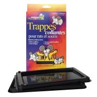 TRAPPES COLLANTES RATS ET SOURIS #12402